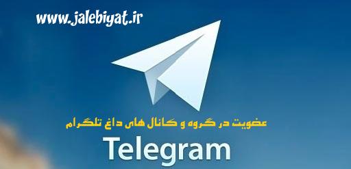 کانال و گروه تلگرامی